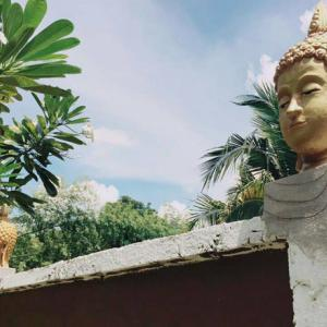 Homeowner Forced to Remove Decorative Buddha Heads After Village Uproar