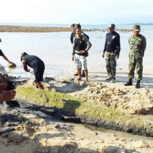 Confusion continues over 'torpedo' at Phuket's Sirinat National Park