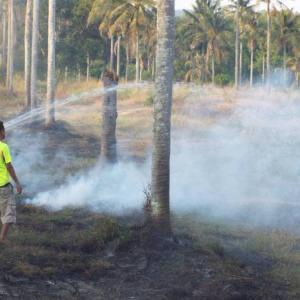 Disaster officials issue fire warning as small wildfires break out
