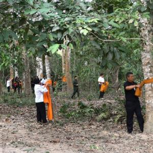 Forest Act to be amended to encourage felling and growing of rare trees