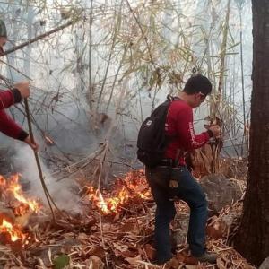 Chiang Mai choking on Day 1 of burning ban