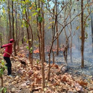 Forest fires flare up in Mae Hong Son