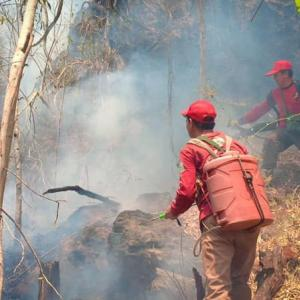 Forest fires continue to plague Mae Hong Son