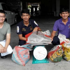 Beware snakes on the move in rainy season, warns official