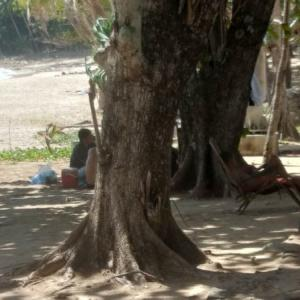 Surin Beach's temporary lifeguards on hold until further notice