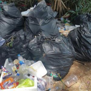 Phuket's Mai Khao Beach disgraced in social media