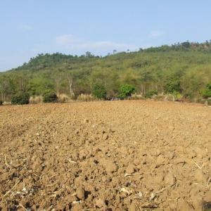 Junta allows other use of ALRO land