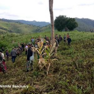Missing forestry official found dead at the foot of a hill in Chiang Mai